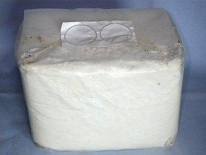 画像1: ヒラタケ菌糸ブロック(12個)